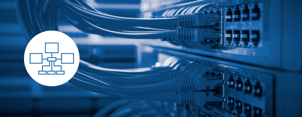 Professional Network Wiring